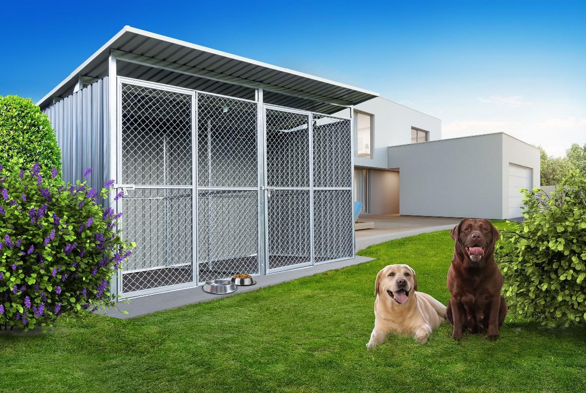 Koterec G21 pre dvoch psov pri dome