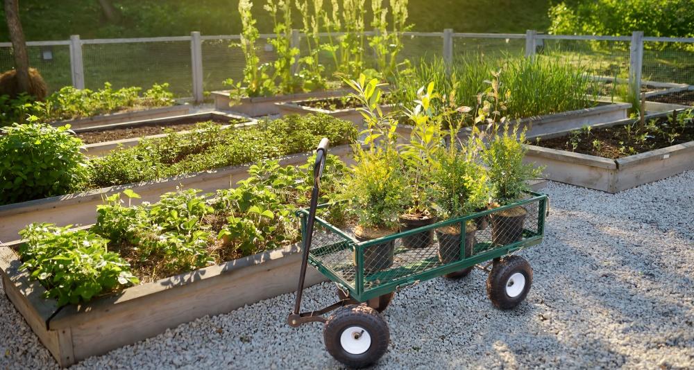 Zahradní vozík G21 GD 90 mezi záhony s naloženou pytlovanou zeminou a květináči