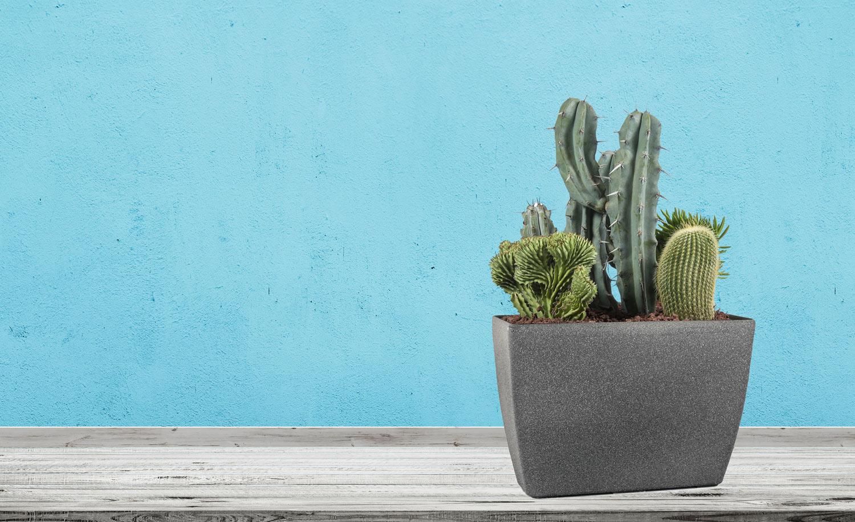 Květináč G21 Industrial Plain je skvělý na kaktusy.