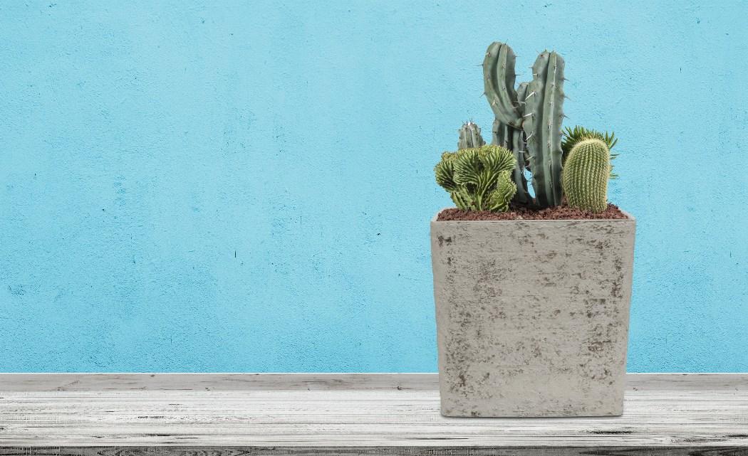 Kvetináč G21 Baltic Brick na polici pred modrou stenou